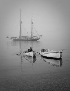 Captain Comes Ashore